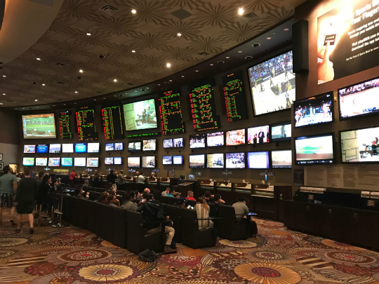 Sports betting vegas mgm hotels yoyoceramic local bitcoins kenya