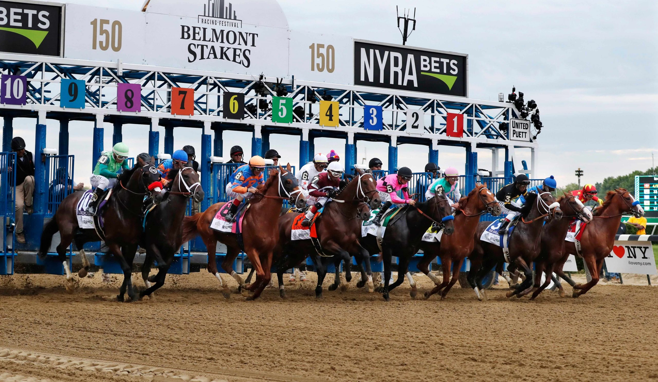 Belmont stakes betting odds 2021 rebelbetting proflowers