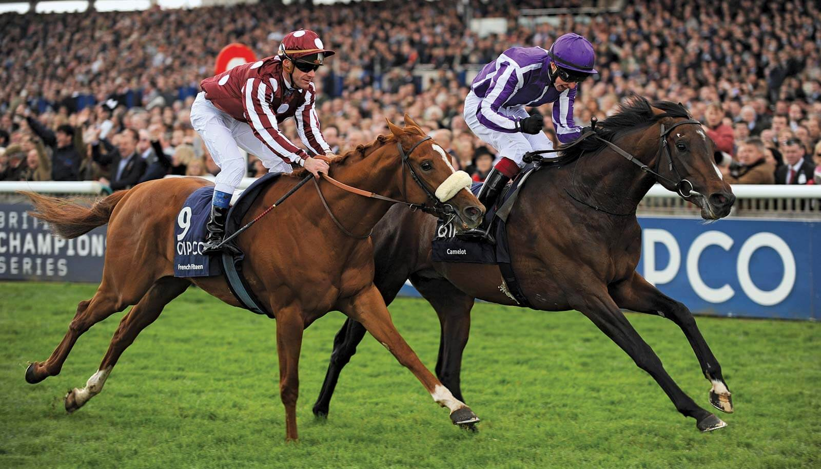 Horse Racing Betting Explained
