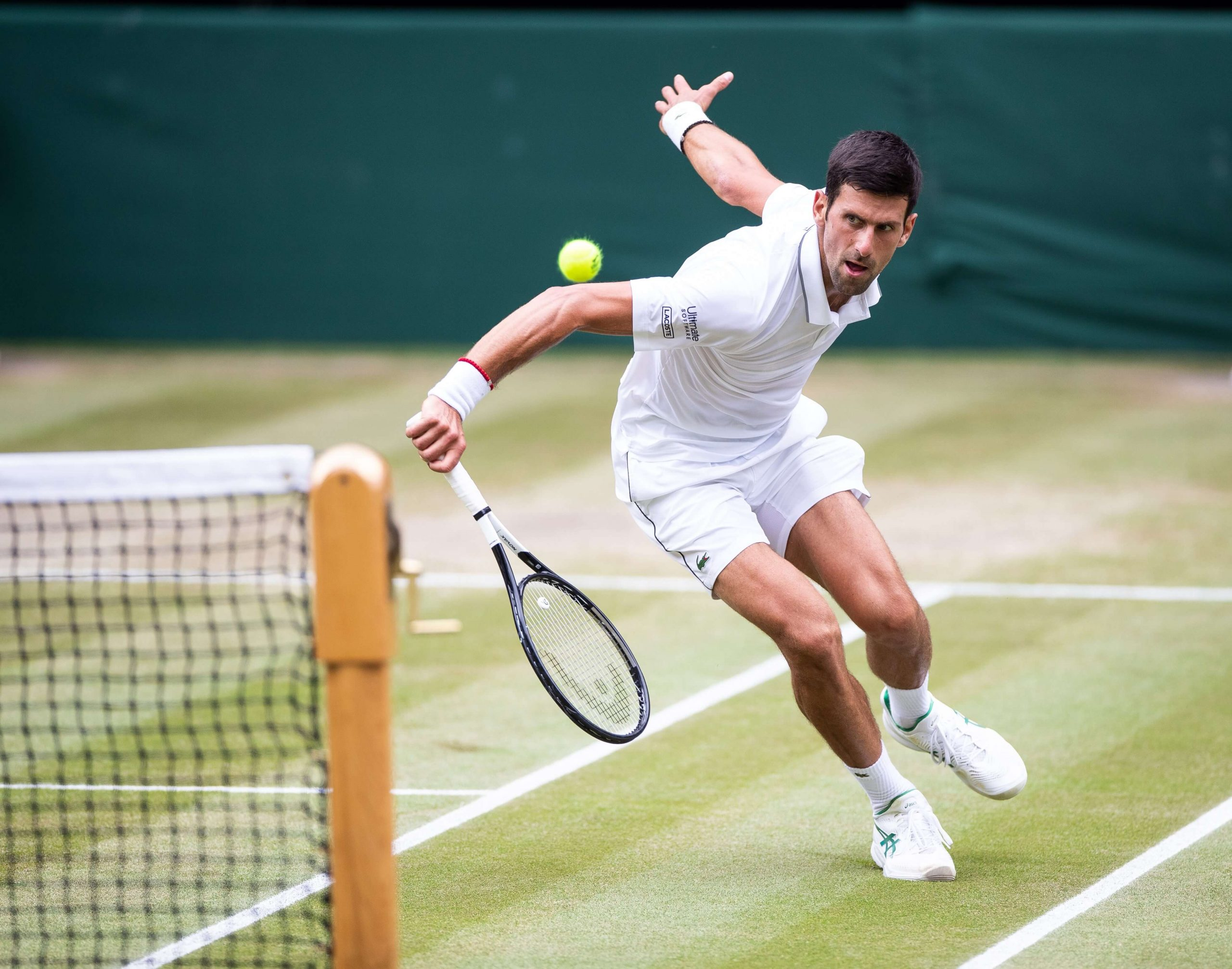 Tennis Betting Online: How to Bet on Tennis